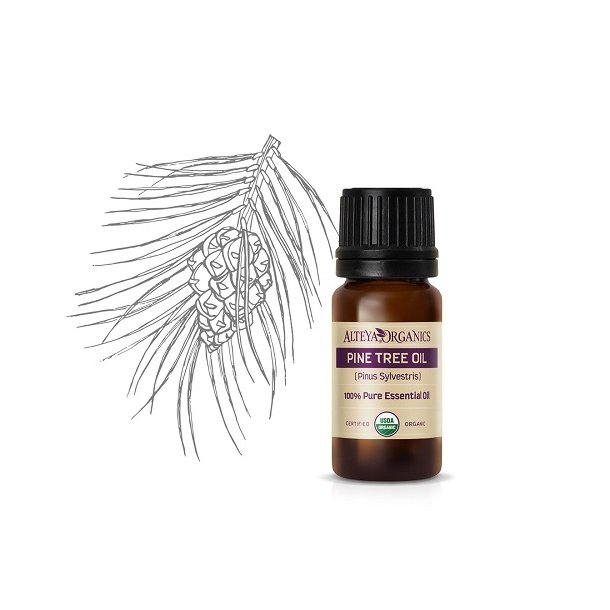 Alteya Organics - Bio Pine Needle essential oil