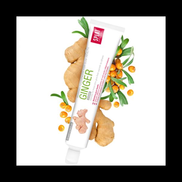 SPLAT® - Toothpaste Ginger