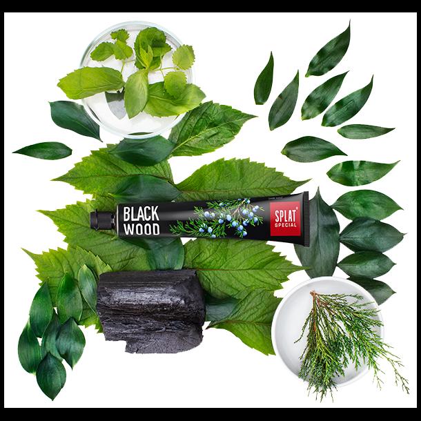 SPLAT® - Toothpaste Blackwood